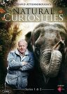 David Attenborough's Natural Curiosities [3 DVD] Sezony 1-2
