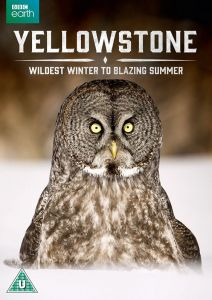 Yellowstone [1 DVD] Miniserial
